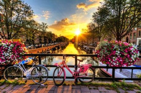 Amsterdam'da bisiklet çok sık kullanılan bir araç